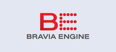 Logo BRAVIA ENGINE